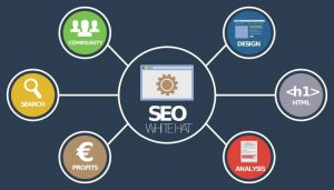 campagne seo agence seo dago referencement